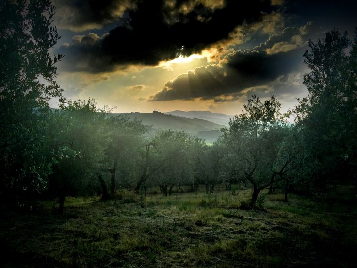 Tra nuvole e campagna