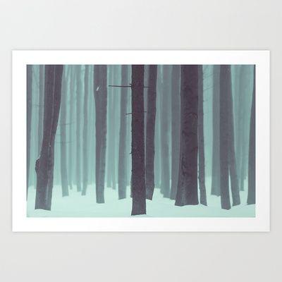 Frozen kingdom  #forest #trees #wood #winter #trunks