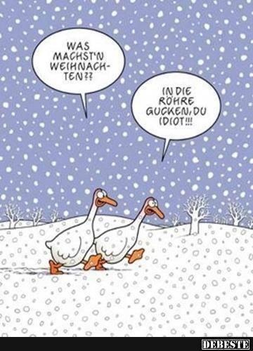 Lustiges Zu Weihnachten Sprüche Weihnachten Pinterest Funny