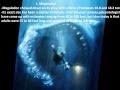 Video - 10 Monster Laut Prasejarah Paling Menakutkan