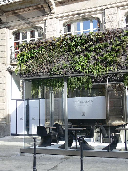 | exterior with plants | cafe trussardi, #davidlopezquincoces