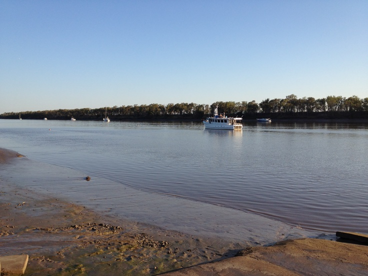 Another picture of the fitzroy river at low tide
