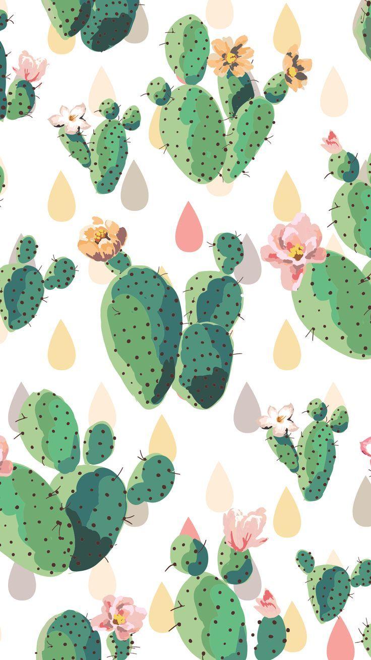 Cactus Iphone Wallpaper Screen Savers Wallpapers Cute Screen Savers Iphone Screen Savers