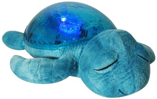 Not sure if this is the best one, but I like the idea. Amazon.com: Tranquil Turtle Sleep Machine: Home & Kitchen