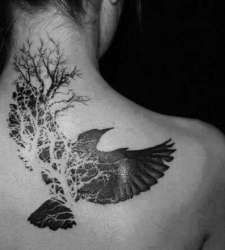 I have been wanting something similar to this for a long time!!!