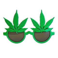 Herb Lover Costume Glasses | Simply Party Supplies