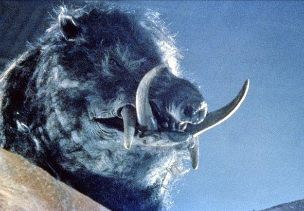 Razorback (1984)   30 Forgotten Horror Films That Are Worth Revisiting