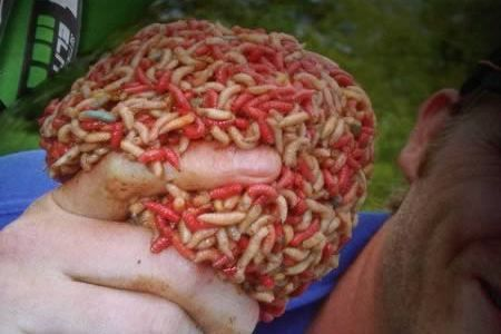 9 Most Bizarre Therapies (maggot therapy, therapies) - ODDEE