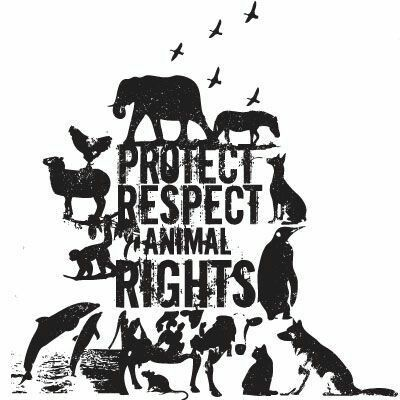 human overpopulation against animal rights Human crimes against animals, part 32 - extinction an animal rights article from all-creaturesorg from dave bernazani 2009 and finally, the number one biggest crime of all against nature, the great mass extinction currently taking place globally – caused by overfarming, overfishing, overpopulation, slash & burn agriculture, overhunting, habitat destruction, invasive species (brought by.
