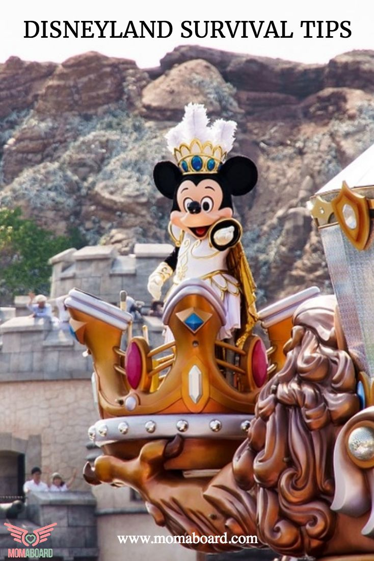Disneyland vacations survival tips from momaboard