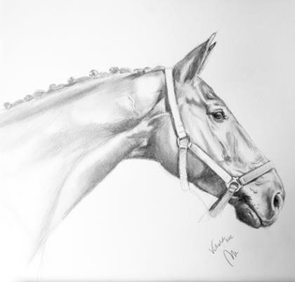 Op zaterdag 4 mei staan we op EquiDay in Ermelo. Onder de bezoekers aan onze stand verloten we daar o.a. een originele Paardenportretten - Mirelle Vegers van je eigen paard. Kom jij ook?
