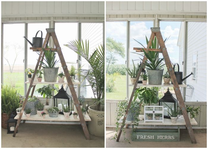 Click to see more photos of this lush and lovely potted garden on DIY ladder shelving! | LoveGrowsWild.com