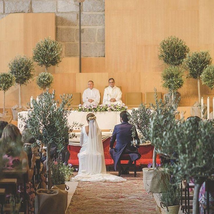 """""""Hoy es día de boda!! Y nos acordamos de la boda de Fatima en su colegio de toda la vida, llena de olivos que tienen un significado muy especial para…"""""""