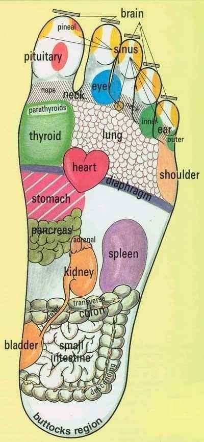 5 Easy To Learn Reflexology Foot Maps – Fit Girl's Diary