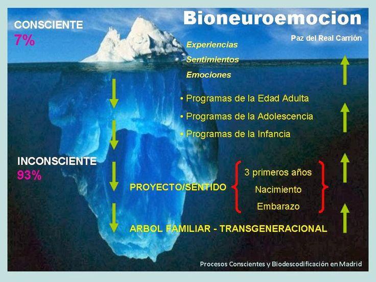 Bioneuroemoción en Madrid - Consultas Presenciales y SKYPE: TE DOY LA BIENVENIDA A BIONEUROEMOCION EN MADRID
