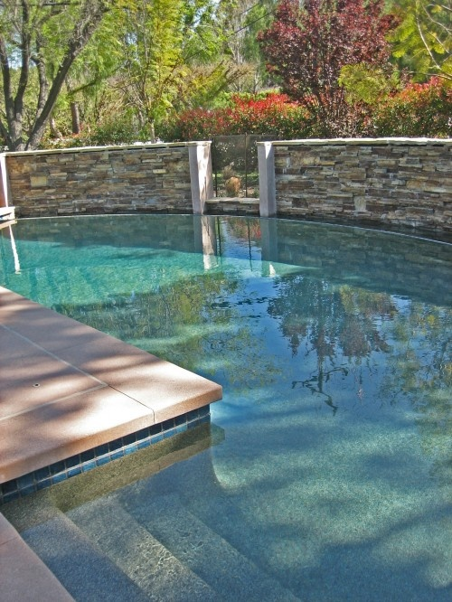 Pool with rock privacy wall swimming pool revamp pinterest for Beautiful pool designs