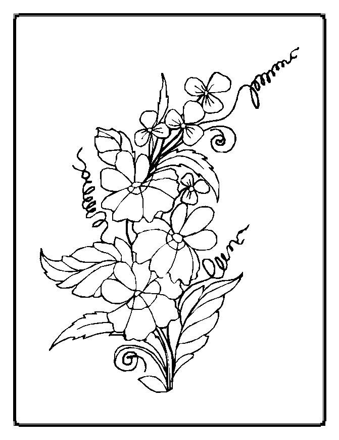 43 best Coloring Activities Science images on Pinterest Flower