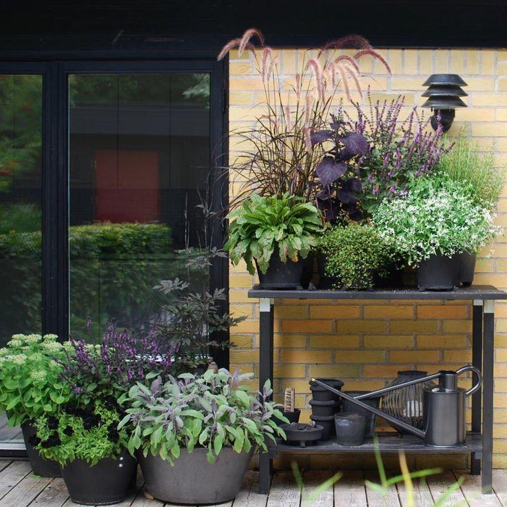 Best Of Balcony Herb Garden Designs & Containers