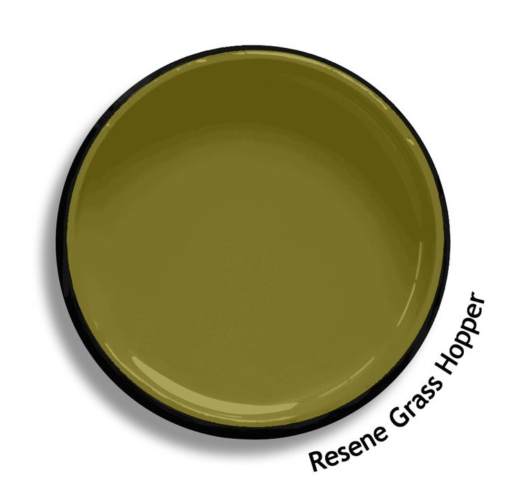 Resene Grass Hopper is a steamy olive, rustic and vigorous. From the Resene Multifinish colour collection. Try a Resene testpot or view a physical sample at your Resene ColorShop or Reseller before making your final colour choice. www.resene.co.nz