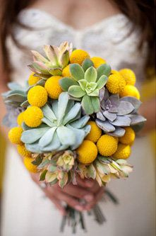 succulents: Wedding Ideas, Wedding Flowers, Bouquets, Billy Balls, Yellow, Delicious