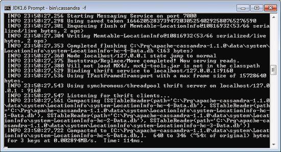 Installing Cassandra with the Cassandra.bat File