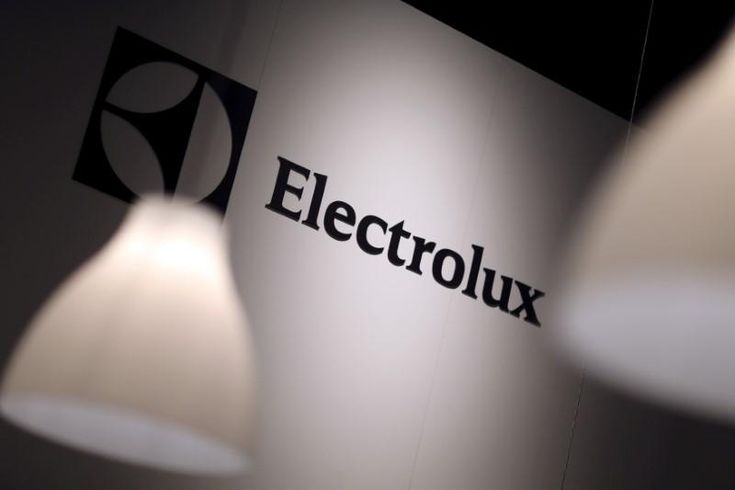 Sweden's Electrolux , Europe's largest home appliance maker, said on Friday it would delay a planned $250 million investment in Tennessee, after U.S. President Donald Trump announced tariffs on imported aluminum and steel.
