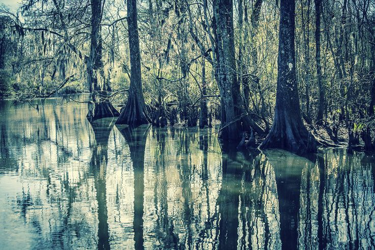 LOUISIANA: Bayou Byways | The 20 Most Scenic Drives In America