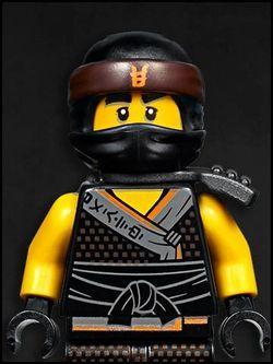 Cole Lego Ninjago S8 Flockis Pins