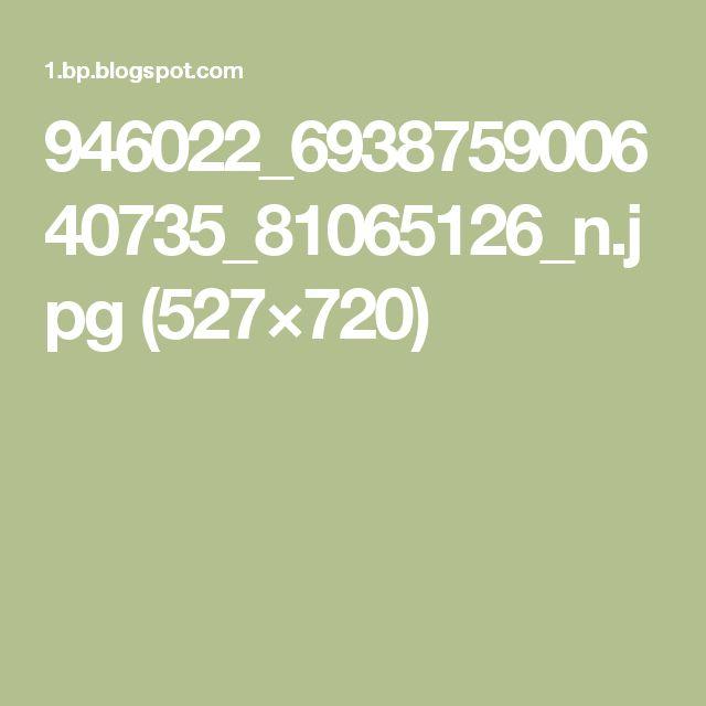 946022_693875900640735_81065126_n.jpg (527×720)