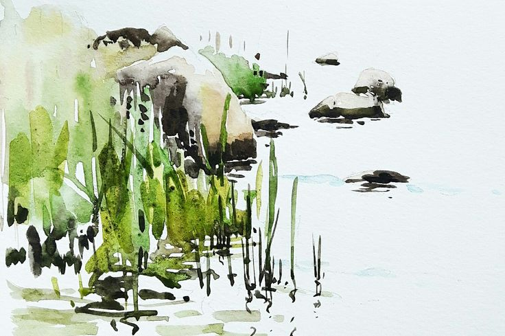 Stenar och vass vid strandkanten. #watercolor #watercolour #art #akvarell