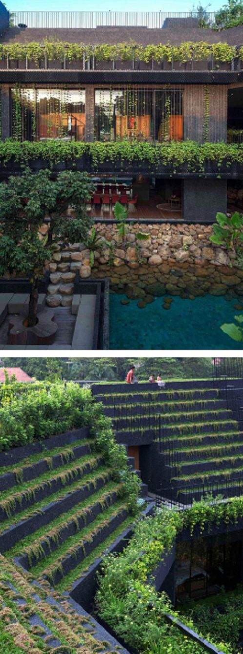 Open Home, A Cool Tropical House Intended For Multi Generation Living