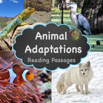 This resource contains five informational reading passages about animal adaptations. It was made for the NGSS 3-LS2 Ecosystems: Interactions, Energy, and Dynamics. It covers the following animals in the the following ecosystems: Collared Lizard - desert Clownfish - ocean Arctic Fox - arctic tundra Blue Heron - wetlands Yellow Jacket - temperate forest