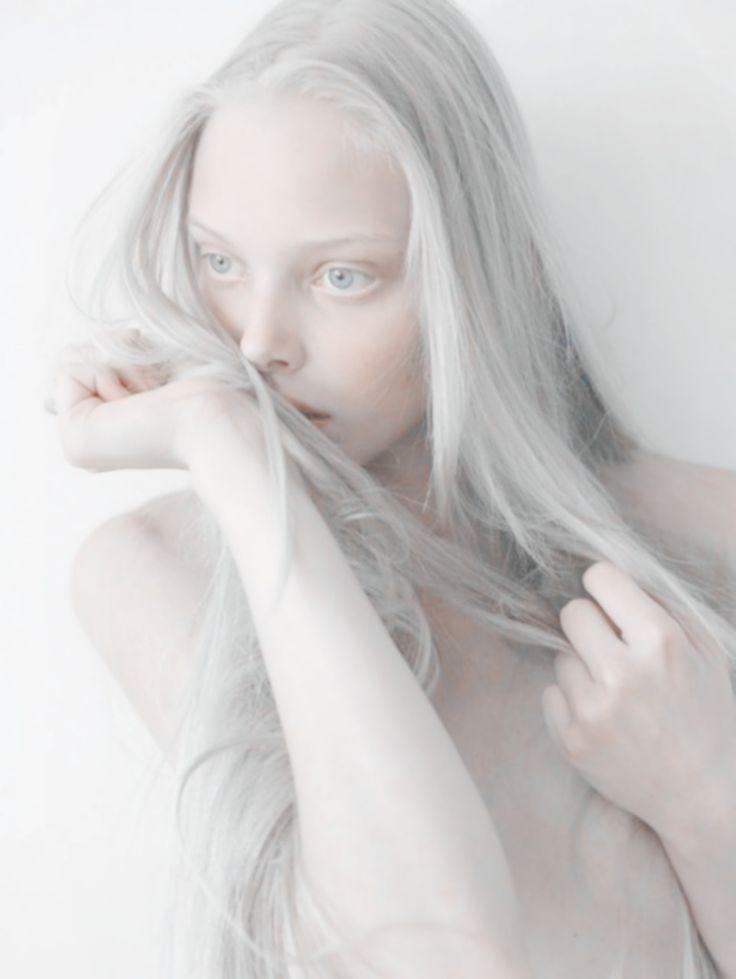 eternal magpie : Photo