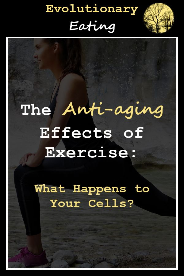 Can Exercise Slow Down Aging? The Benefits Of Exercise On ...