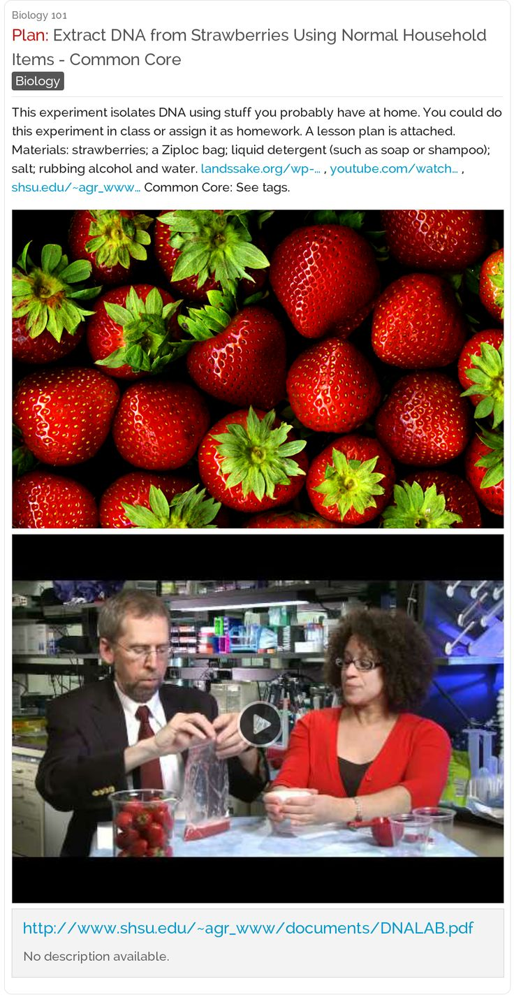 "Cool! ""Extract DNA from Strawberries Using Normal"
