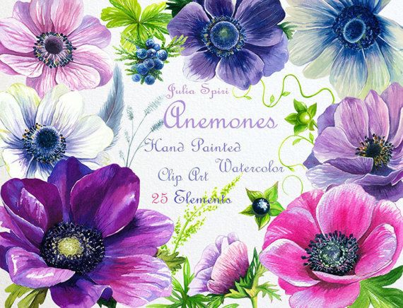 Watercolor Flowers Clipart Anemone Wedding by JuliaSpiri on Etsy