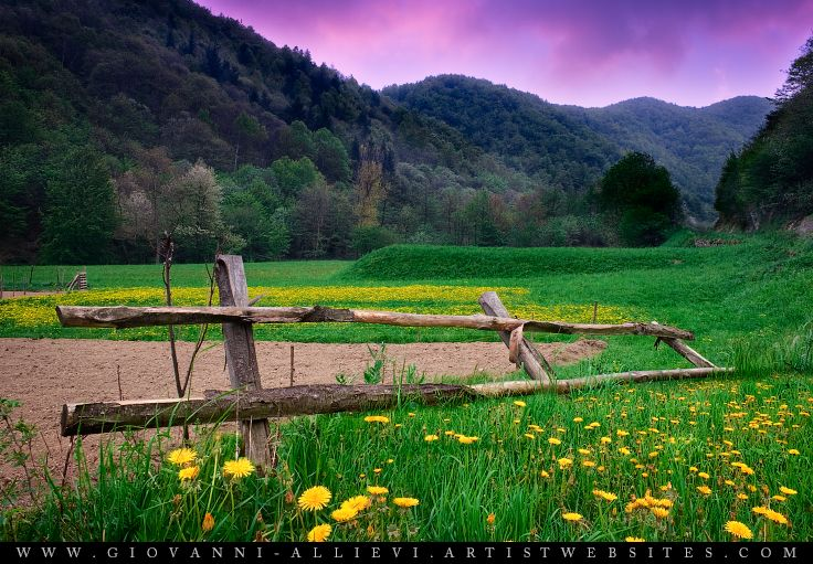 Wooden fence in a green meadow at dusk. Prints available at http://giovanni-allievi.artistwebsites.com/art/all/all/all/landscapes