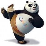 Google Panda 3.3 - Is SEO Dead?