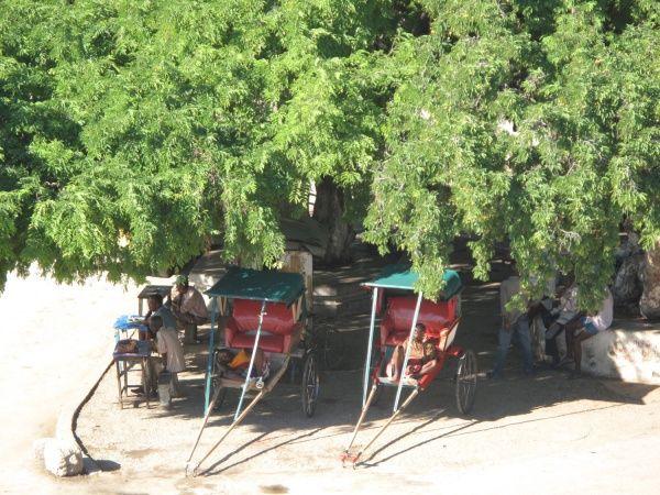 Rickshaws by the marketplace in Tulear - southwest Madagascar http://madacamp.com/Tulear