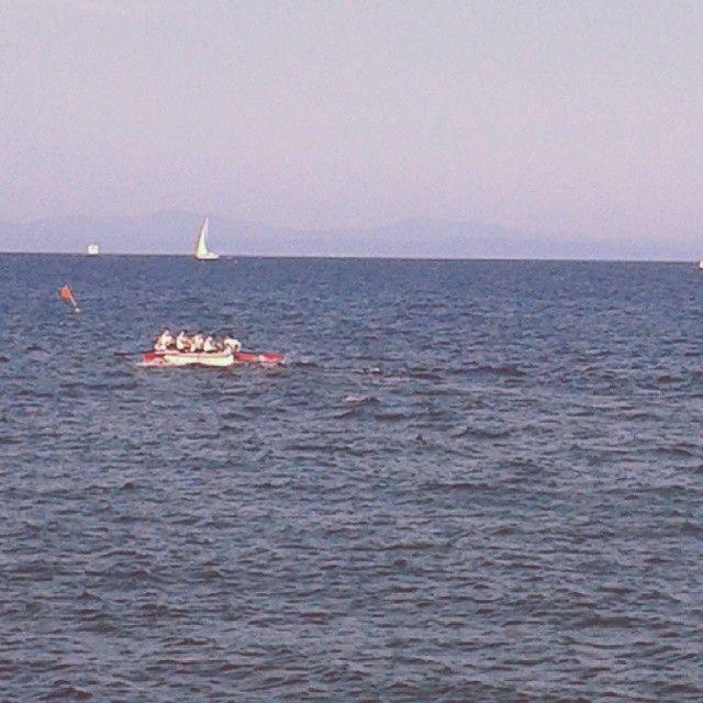 #ShareIG #palioremiero dei rioni #RioMarina il primo turno #RioMarina contro #marcianamarina vince #marcianamarina :-( #Elba #Lacostachebrilla #isoladelba #sport #sea