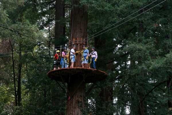 Redwoods Canopy Tour - Mount Hermon, CA - Canopy-