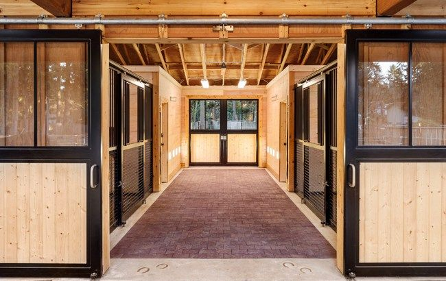 Best 25 small horse barns ideas on pinterest 2 stall horse barn