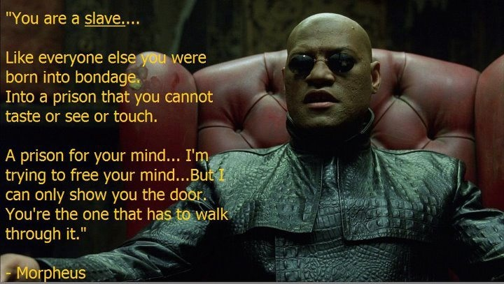 The Matrix: Doors, Inspiration, Tv Quotes, The Matrix, Funny Stuff, Interesting Stuff, Quotes Motivation, Movie Mania, The Roller Coasters