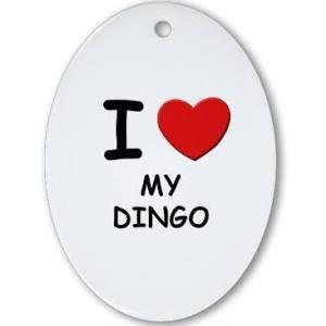 I do love my dingo