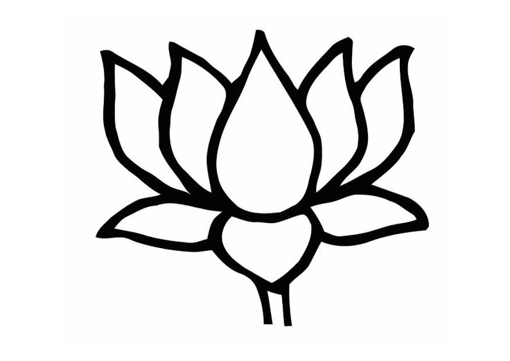 Lotus Flower Drawing | Buddhist-Inspired Coloring Sheets