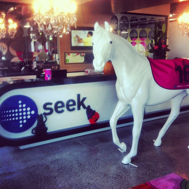 Meet Horatio von Seekington - the beautiful thoroughbred who greets visitors in the SEEK office!