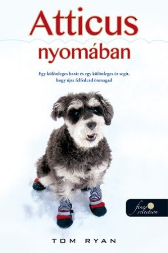 könyv-2015-cosmopolitan