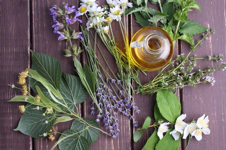 Du möchtest Haut und Haar pflegen, dafür aber keine chemischen Produkte verwenden? Probiere doch mal, deine Beauty-Produkte selbst mit Kräutern aus Deinem Garten herzustellen.