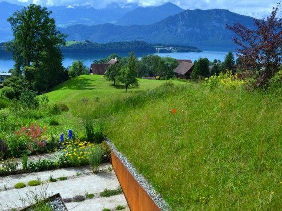 Die besten 25 trennwand garten ideen auf pinterest deck sichtschutz balkon trennwand und - Gartengestaltung trennwande ...