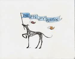 Adopt a greyhound!
